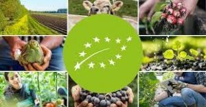 Food for Europe