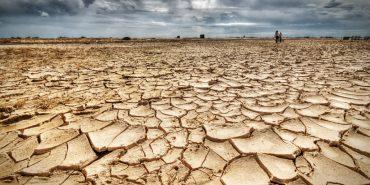 dia-mundial-da-seca:-organico-e-a-solucao-para-evitar-a-desertificacao-e-o-consumo-da-terra